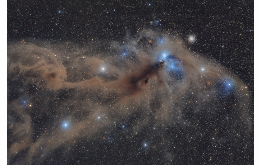 fot. Mario Cogo, Corona Australis Dust Complex, 1. miejsce w kategorii Stars and Nebulae / Insight Astronomy Photographer of the Year 2018