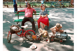 "fot. D. Gorton, ""Cats on Parade"", Central Park / NYC Park Photo Archive"