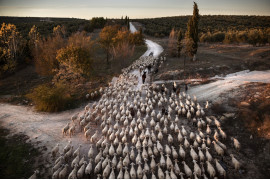 "fot. Susana Giron,  I miejsce w kategorii ""Journeys & Adventures"" Siena International Photo Awards 2019"