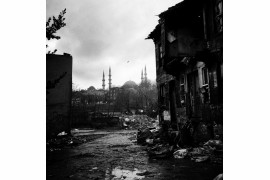 "fot. Sevil Alkan, ""Stray Dog"", wyróżnienie w kategorii Projects & Portfolios w konkursie Urban Photo Awards 2018"