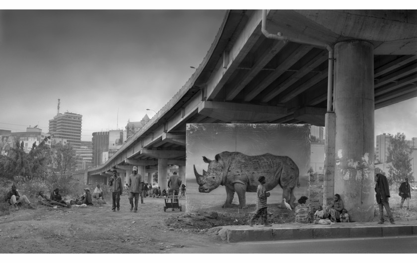 fot. Nick Brandt, Underpass with Rhino