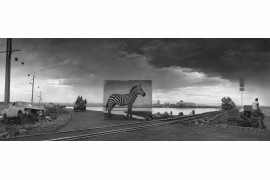 "fot. Nickt Brandt, ""Road to Factory with Zebra"""