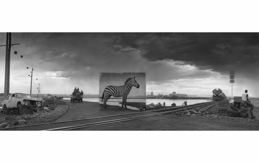fot. Nickt Brandt, Road to Factory with Zebra
