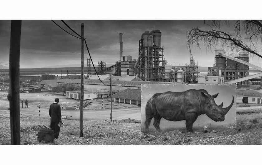 fot. Nick Brandt, Factory with Rhino