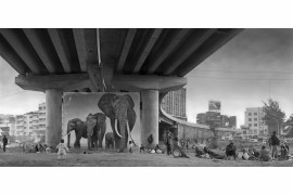 "fot. Nick Brandt, ""Underpass with Elephants"""