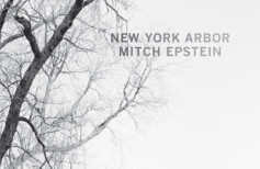 "Mitch Epstein ""New York Arbor"" - recenzja"