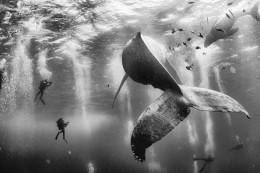 National Geographic Traveler Photo Contest 2015 - nagrodzone prace